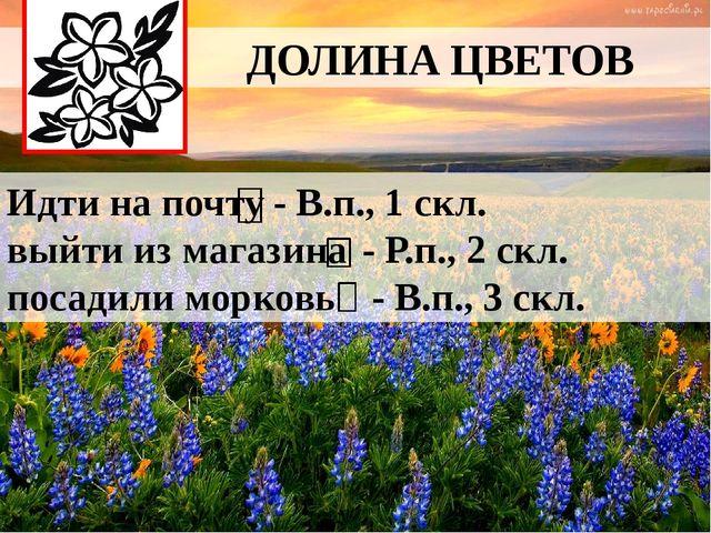 ДОЛИНА ЦВЕТОВ Идти на почту выйти из магазина посадили морковь - В.п., 1 скл...