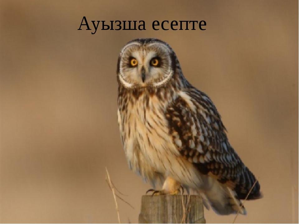 Ауызша есепте
