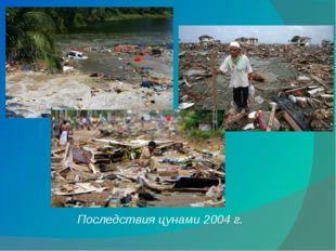 Последствия цунами 2004 г.