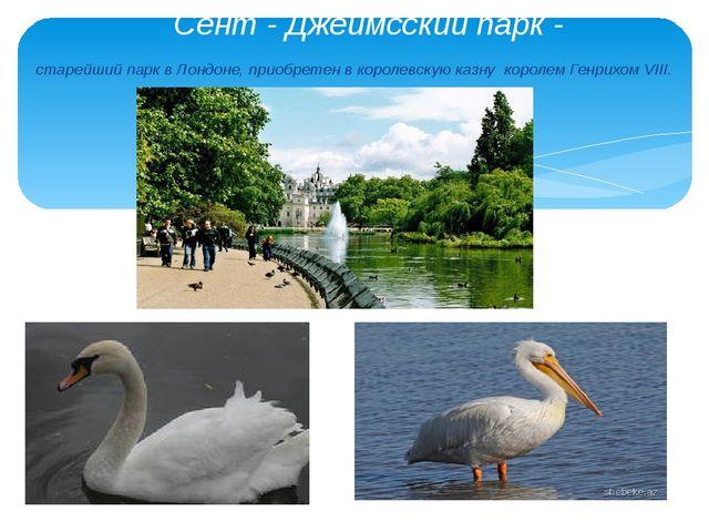Сент - Джеймсский парк - старейший парк в Лондоне, приобретен в королевскую к...