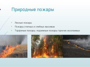 Природные пожары Лесные пожары Пожары степных и хлебных массивов Торфяные пож