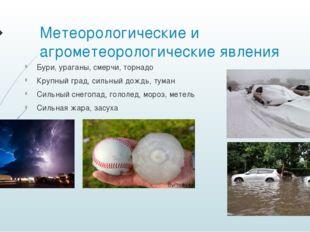 Метеорологические и агрометеорологические явления Бури, ураганы, смерчи, торн