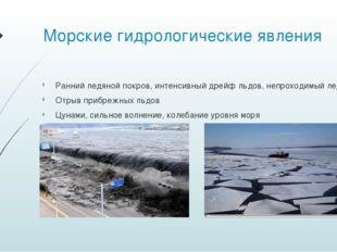 Морские гидрологические явления Ранний ледяной покров, интенсивный дрейф льдо
