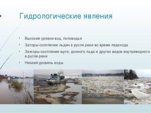 Гидрологические явления Высокие уровни вод, половодья Заторы-скоплениельдин