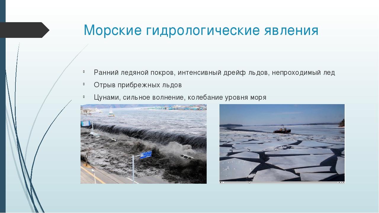 Морские гидрологические явления Ранний ледяной покров, интенсивный дрейф льдо...