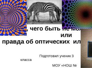 «Видеть то, чего быть не может» или «Вся правда об оптических иллюзиях» Подг