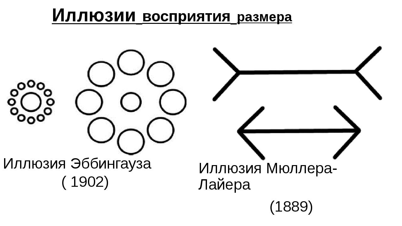 Иллюзии восприятия размера Иллюзия Мюллера-Лайера (1889) Иллюзия Эббингауза...