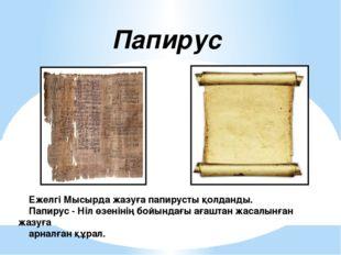 Ежелгі Мысырда жазуға папирусты қолданды. Папирус - Ніл өзенінің бойындағы а