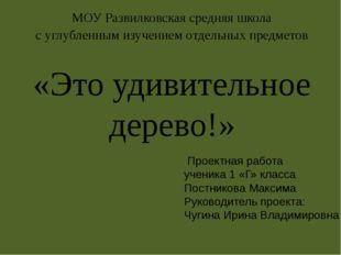 МОУ Развилковская средняя школа с углубленным изучением отдельных предметов «