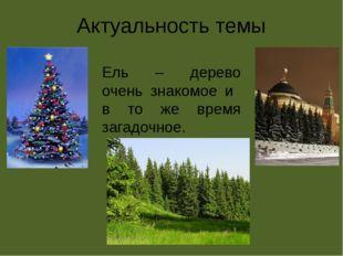 Актуальность темы Ель – дерево очень знакомое и в то же время загадочное.