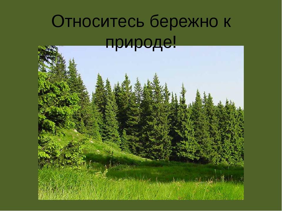 Относитесь бережно к природе!