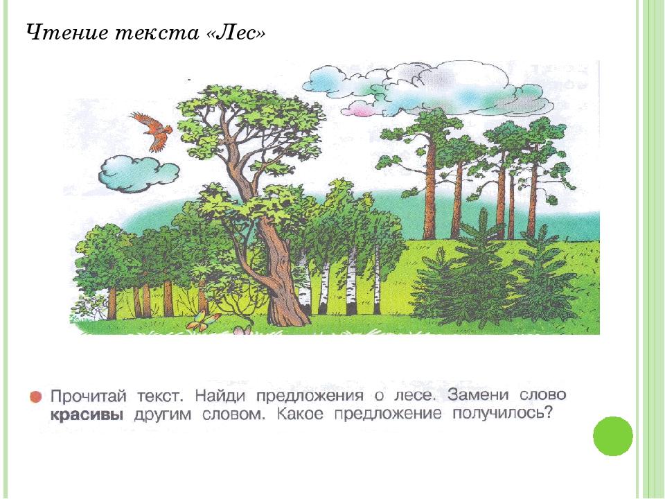 Чтение текста «Лес»
