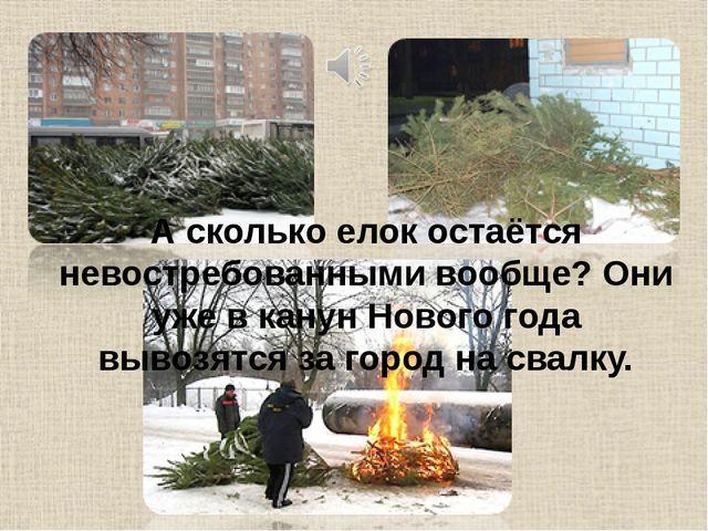 А сколько елок остаётся невостребованными вообще? Они уже в канун Нового года...