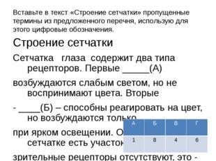 Вставьте в текст «Строение сетчатки» пропущенные термины из предложенного пер