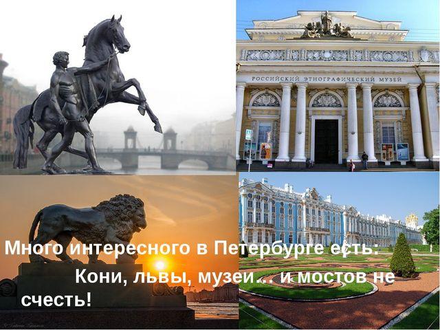 Много интересного в Петербурге есть: Кони, львы, музеи… и мостов не счесть!
