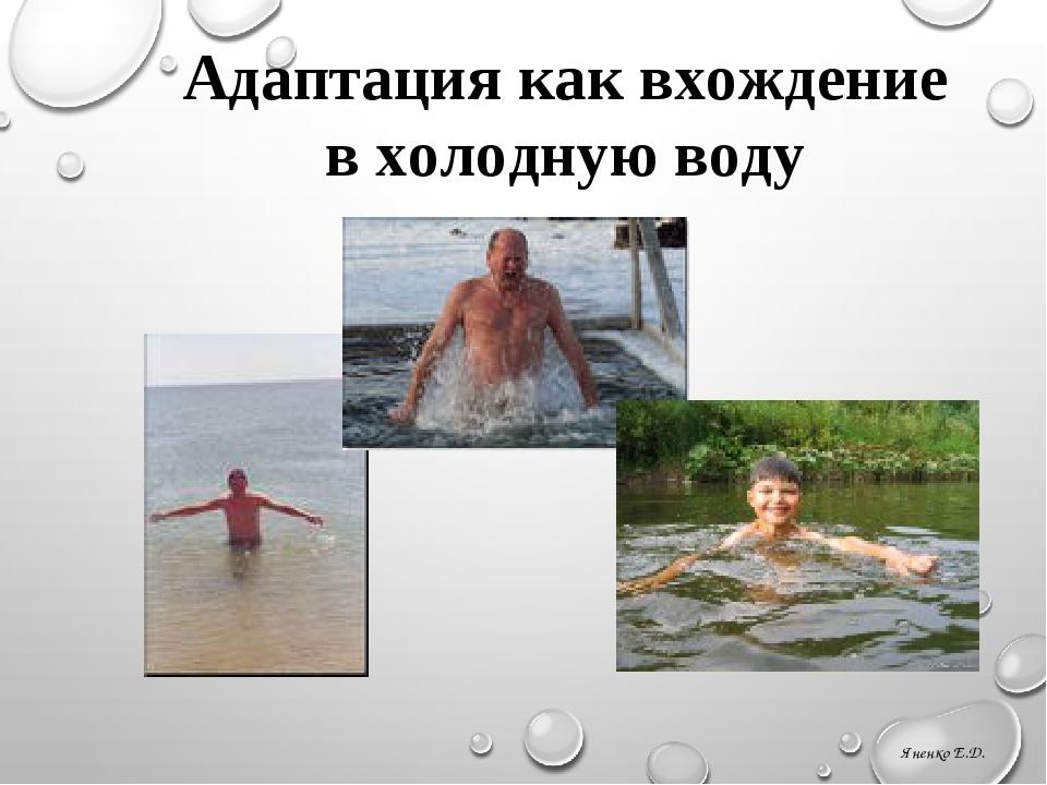 Адаптация как вхождение в холодную воду Яненко Е.Д. Бильгильдеева Т.Ю. МБУ г....