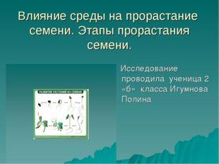 Влияние среды на прорастание семени. Этапы прорастания семени. Исследование п