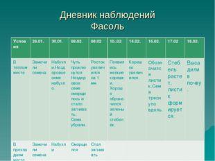 Дневник наблюдений Фасоль Условия26.01.30.01.08.02.08.0210..0214.02.16