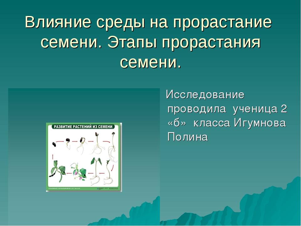 Влияние среды на прорастание семени. Этапы прорастания семени. Исследование п...
