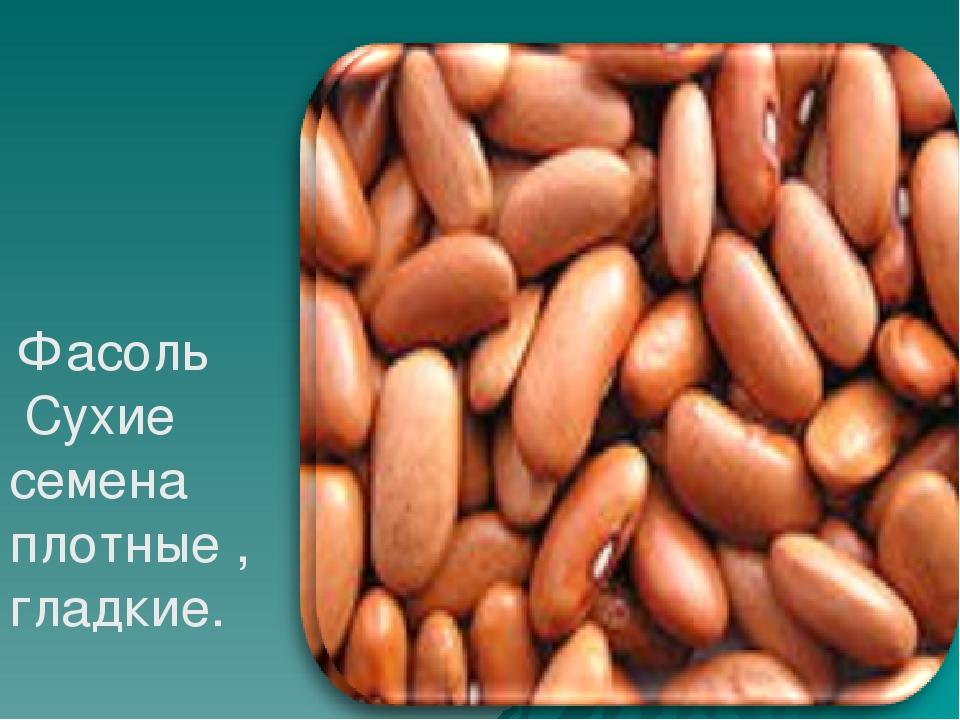 Фасоль Сухие семена плотные , гладкие.
