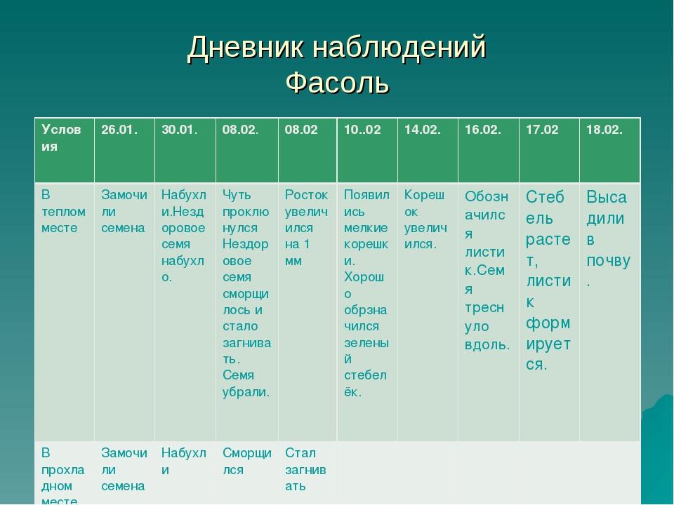 Дневник наблюдений Фасоль Условия26.01.30.01.08.02.08.0210..0214.02.16...