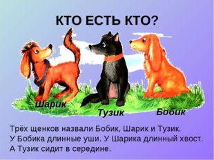 КТО ЕСТЬ КТО? Трёх щенков назвали Бобик, Шарик и Тузик. У Бобика длинные уши.