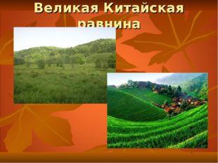 По виду рельефа различают равнины: плоские или горизонтальные – Великая Китай