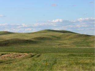 холмистые — в рельефе встречаются отдельные холмы, сопки, овраги. Пример — Во