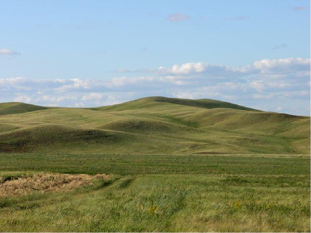 холмистые — в рельефе встречаются отдельные холмы, сопки, овраги. Пример — Во...