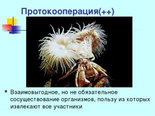 Протокооперация(++) Взаимовыгодное, но не обязательное сосуществование органи