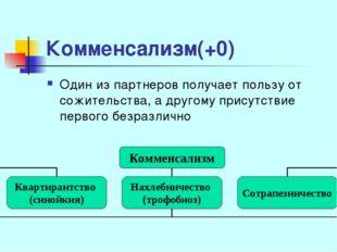 Комменсализм(+0) Один из партнеров получает пользу от сожительства, а другому