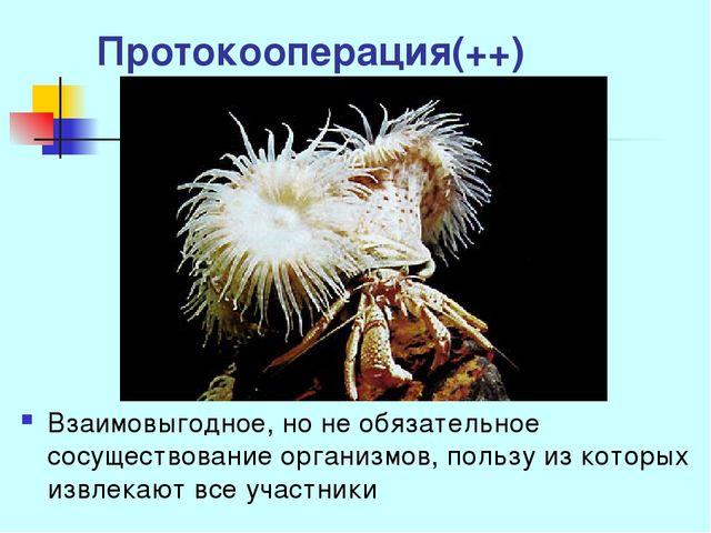 Протокооперация(++) Взаимовыгодное, но не обязательное сосуществование органи...