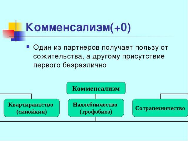 Комменсализм(+0) Один из партнеров получает пользу от сожительства, а другому...
