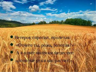 Ветерок спросил, пролетая: «Отчего ты, рожь, золотая?» А в ответ колоски шел