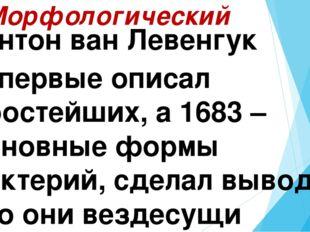 2. Морфологический Антон ван Левенгук Впервые описал простейших, а 1683 – осн