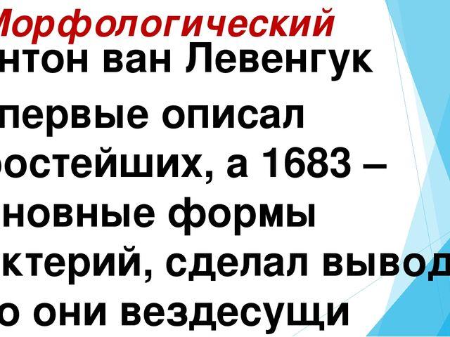 2. Морфологический Антон ван Левенгук Впервые описал простейших, а 1683 – осн...