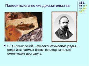 Палеонтологические доказательства В.О Ковалевский – филогенетические ряды – р