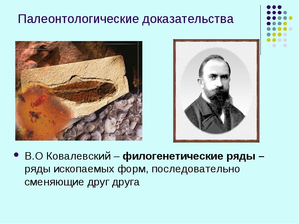 Палеонтологические доказательства В.О Ковалевский – филогенетические ряды – р...