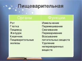 Пищеварительная Органы Функции Рот Глотка Пищевод Желудок Кишечник Пищеварите