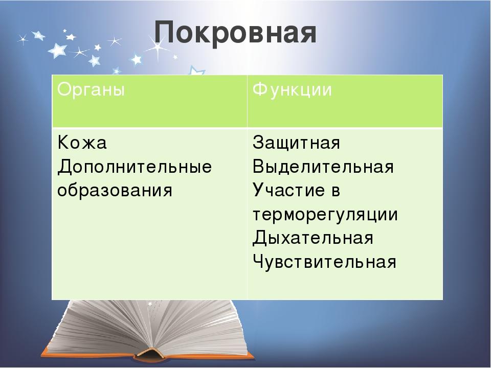 Покровная Органы Функции Кожа Дополнительныеобразования Защитная Выделительна...