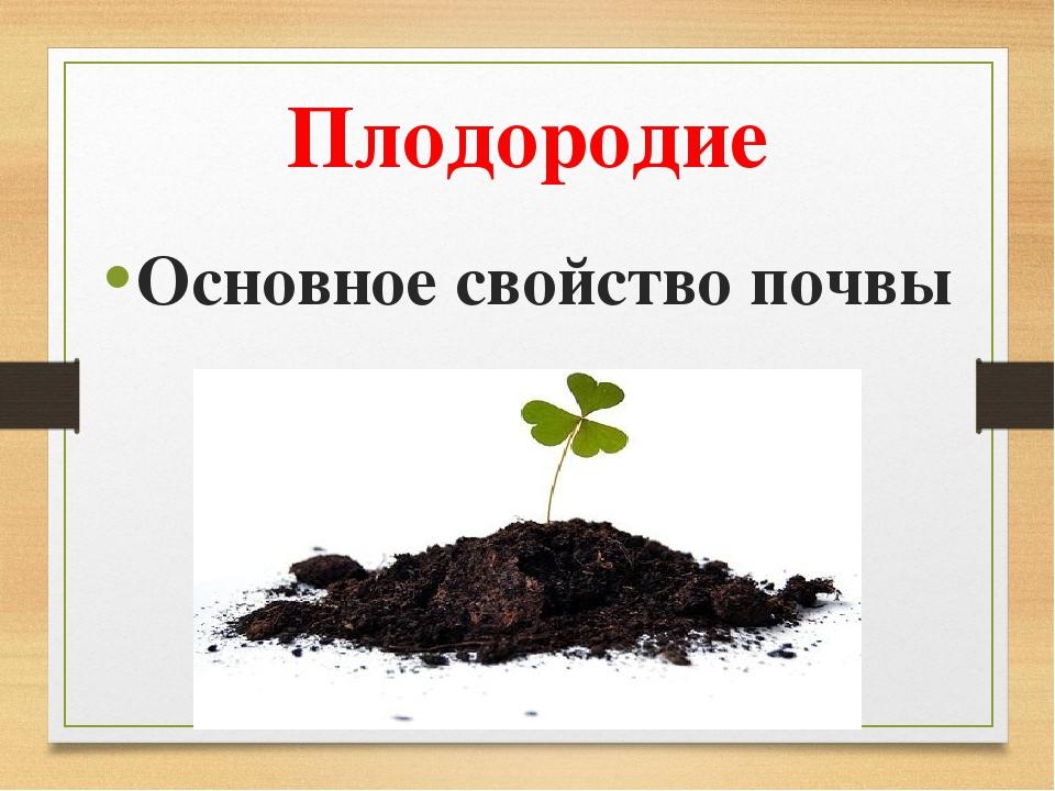Плодородие Основное свойство почвы