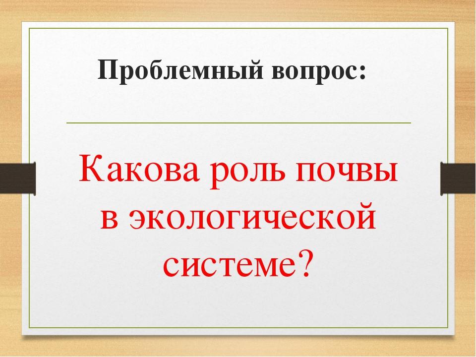 Проблемный вопрос: Какова роль почвы в экологической системе?