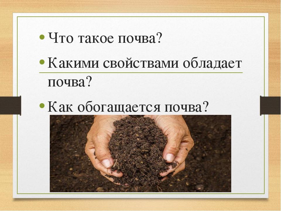 Что такое почва? Какими свойствами обладает почва? Как обогащается почва?