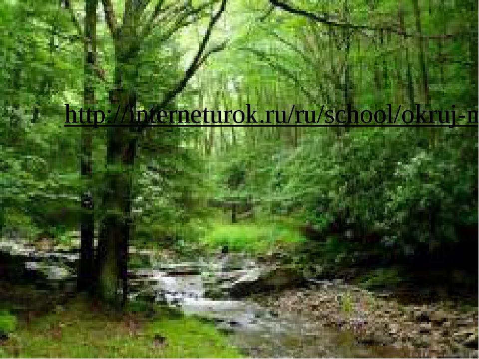 http://interneturok.ru/ru/school/okruj-mir/1-klass/zhivotnyy-mir/zemnovodnye-...