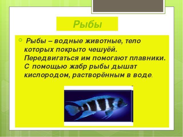 Рыбы Рыбы – водные животные, тело которых покрыто чешуёй. Передвигаться им по...