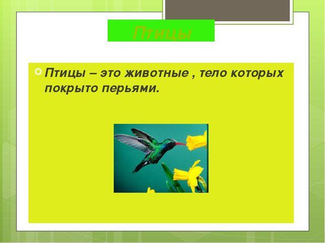 Птицы Птицы – это животные , тело которых покрыто перьями.