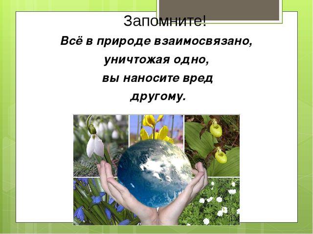 Запомните! Всё в природе взаимосвязано, уничтожая одно, вы наносите вред друг...