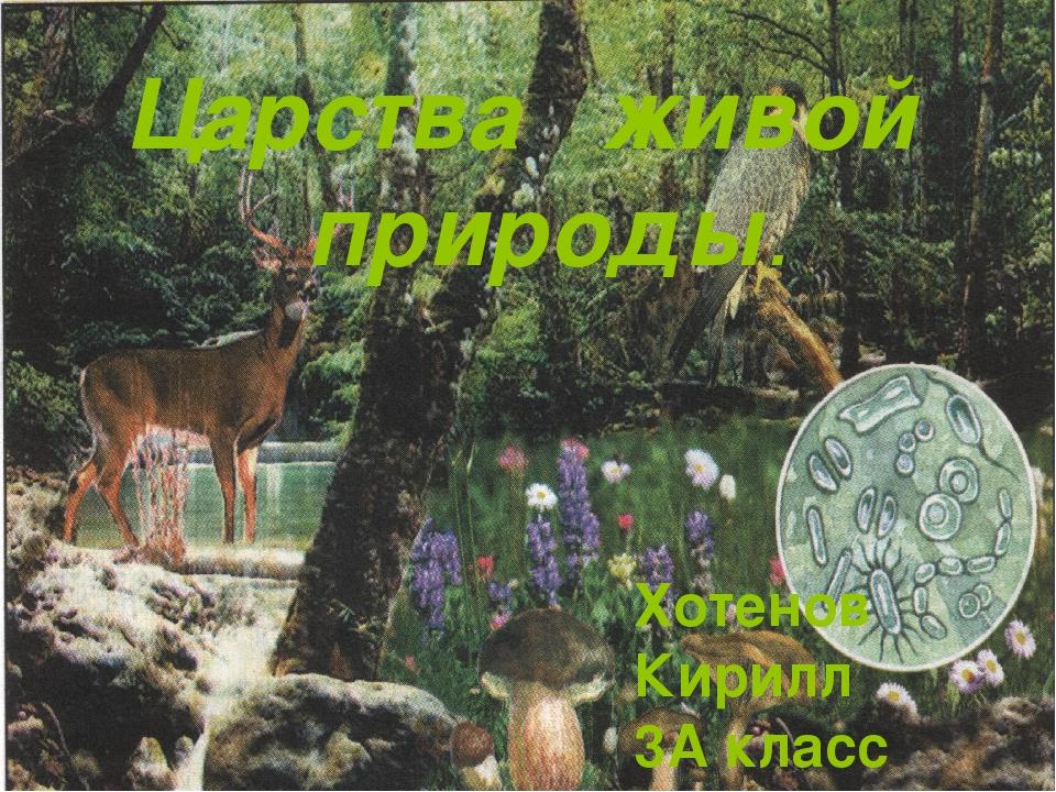 Царства живой природы. Хотенов Кирилл 3А класс МБОУ Гимназия№38