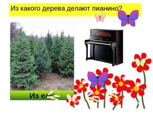 Из ели Из какого дерева делают пианино?