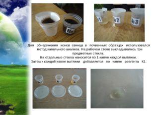 Для обнаружения ионов свинца в почвенных образцах использовался метод капельн